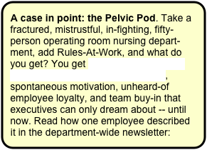 A case in point: the Pelvic Pod. Take a fractured, mistrustful, in-fighting, fifty-person operating room nursing depart-ment, add Rules-At-Work, and what do you get? You get award-winning, news-making, off-the-charts performance, spontaneous motivation, unheard-of employee loyalty, and team buy-in that executives can only dream about -- until now. Read how one employee described it in the department-wide newsletter: